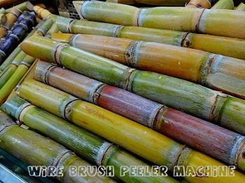 sugar-cane-276242_640-(1).jpg